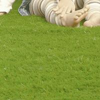 リアル人工芝