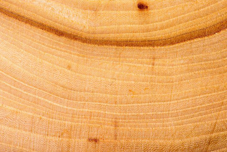 日本の住まいになじむ木の表札選び