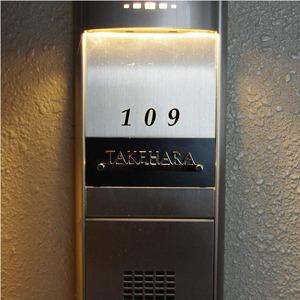 20110217-luce