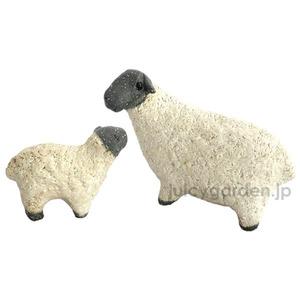 G1KI-SHEEP_1